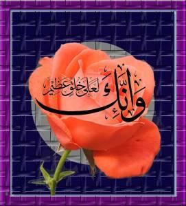 Islamic-image.........