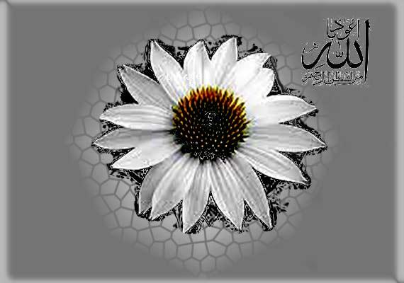 Islamic-image........