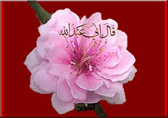 Islamic-image.................