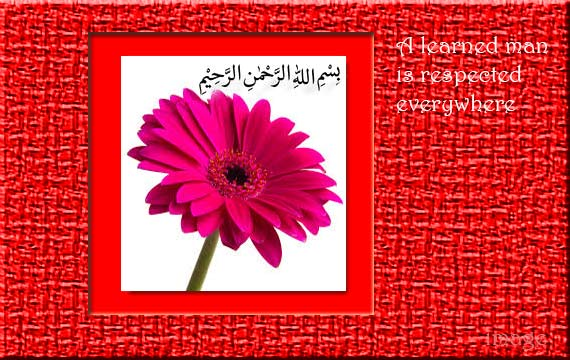 Islamic-image....................