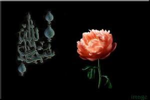 Islamic-image